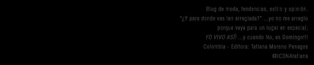 IconaStyle Logo